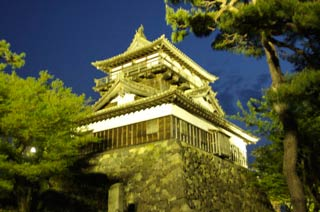 Maruoka Castle at Night