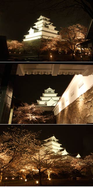Wakamatsu Castle at night