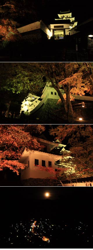 Gujo-Hachiman Castle at night
