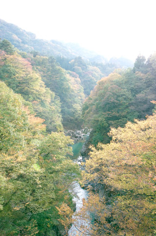 Agatsuma Valley