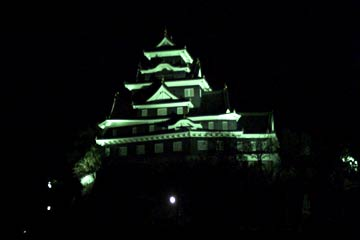 Okayama Castle at night