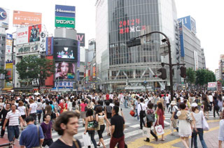 Shibuya Summarized