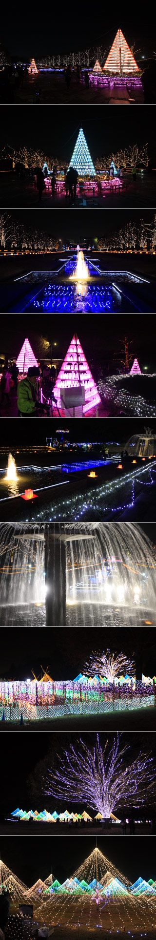 Showa Kinen Park Illumination