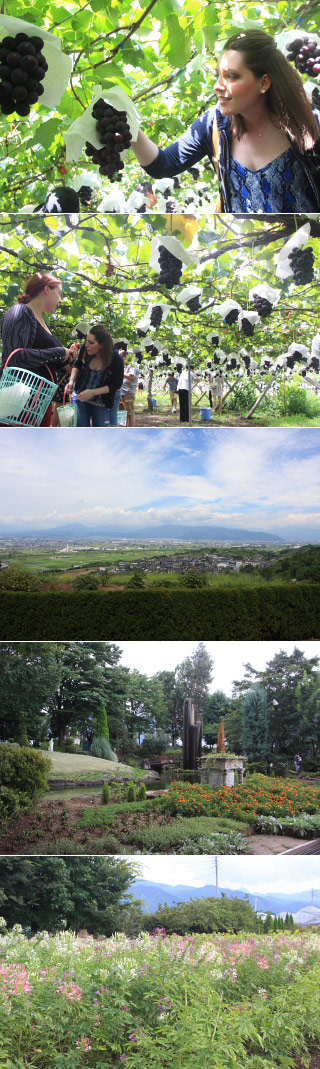 Shiki Bus Grape Picking & Onsen Tour